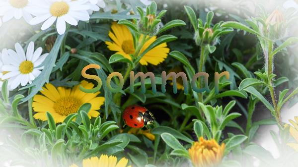 sommar-sommar-nyckel-piga